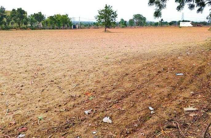 धूळ पेरणी | Due to dust sowing, crisis against farmers in Nagpur district